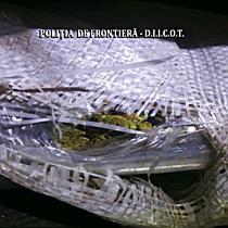 """Cu """"iarba"""" în saci, la vamă. Captură de 750 kg de canabis, de 9 milioane de euro"""