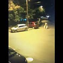 Poliția Locală îi face de râs pe Facebook pe cei care aruncă gunoaie la colț de stradă