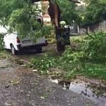 Furtuna la Timisoara 2
