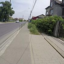 Jungla urbana de pe Musicescu: iarba creste in nestire pe cea mai lunga strada din Timisoara