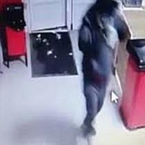 Hoți prinși cu focuri de armă după ce au spart un magazin Profi