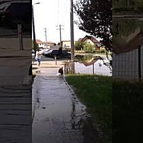 Inundatie pe o strada din Timisoara I