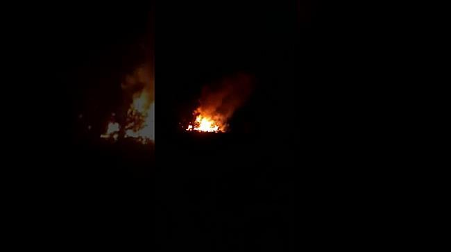 Animale moarte și zeci de tone de cereale făcute scrum în urma unui incendiu, la Lenauheim