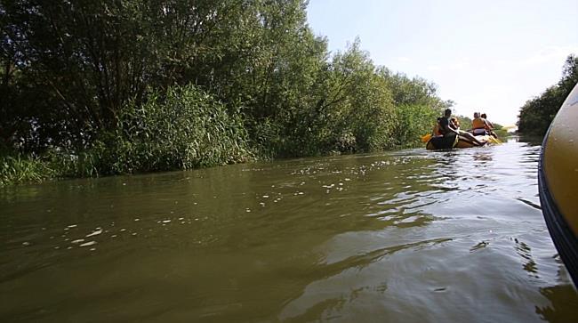 Excursie cu barca, langa Timisoara, pe Bega