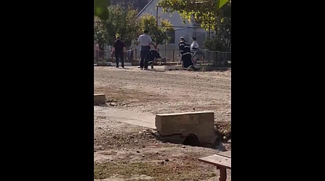 Caine salvat de pompieri de sub un podet, in Timis